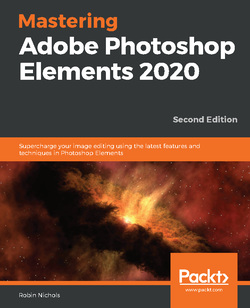 تسلط بر Adobe Photoshop Elements 2020
