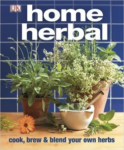 کلکسیون گیاهان خانگی؛ راهنمای نهایی آشپزی و ترکیب گیاهان خانگی شما