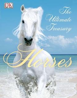 اسبها؛ گنجینههای <strong> اساسی</strong> ,