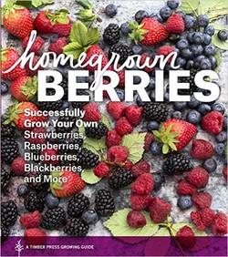 انواع توتهای خانگی؛ موفقیت در پرورش توتفرنگی، تمشک و غیره توسط خودتان