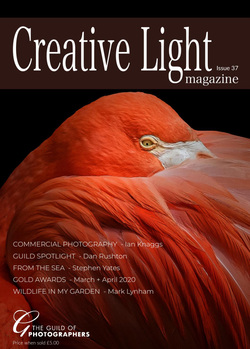 مجله Creative Light؛ شماره 37، 2020
